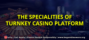 The specialities of Turnkey casino platform