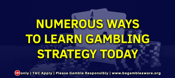 Numerous Ways to learn gambling strategy today